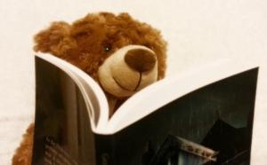 bear in bed